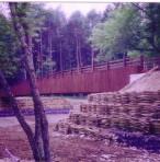 49.日光 西ノ湖 橋